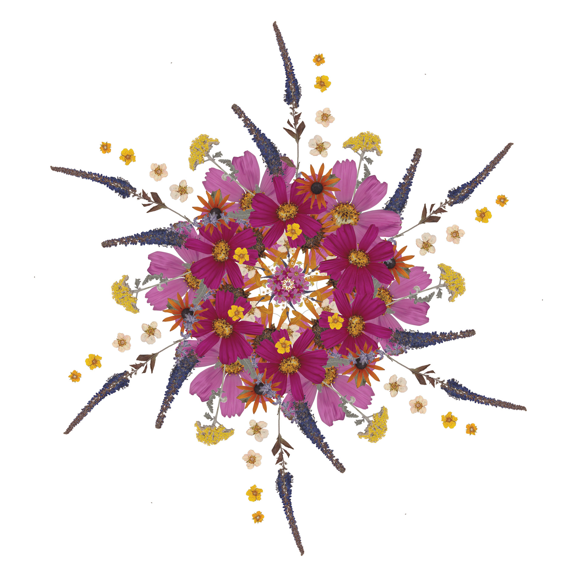 Mandala Art Pressed Flowers