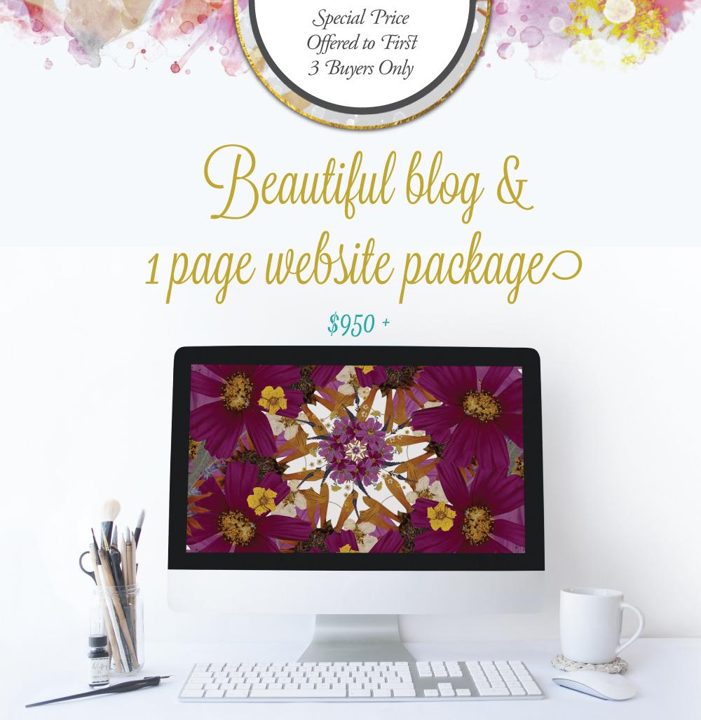 1 page wordpress website boulder colorado