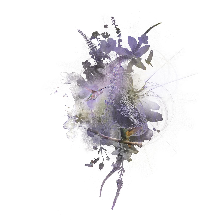 hummingbird-medicine-2